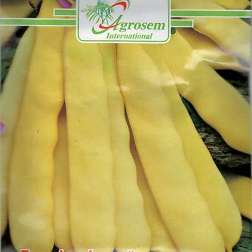 Seminte legume - Fasole Oloaga Supernano Yellow