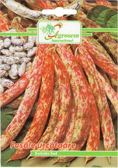 Seminte legume -Fasole Urcatoare Borlotto Red