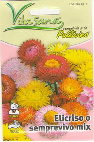 Seminte Flori de pai
