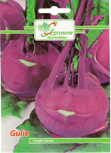 Seminte legume - Gulie Purple Viena