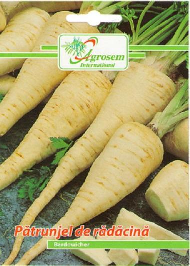 Seminte legume - Patrunjel Radacina Bardowicher