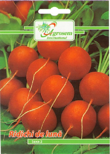 Seminte legume - Ridichi Luna Saxa 2