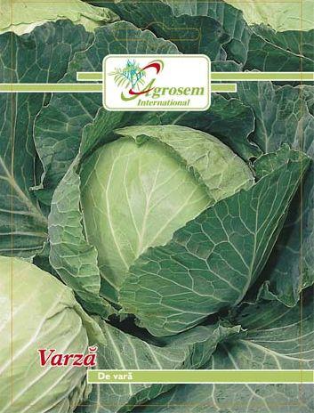 Seminte legume - Varza De Vara Copenhagen Market