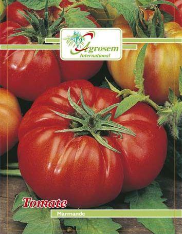 Seminte legume - Tomate Marmande